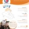 منظمة الند لدمقرطة الشباب